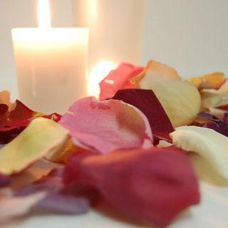 Freeze_dried_flower_petals500